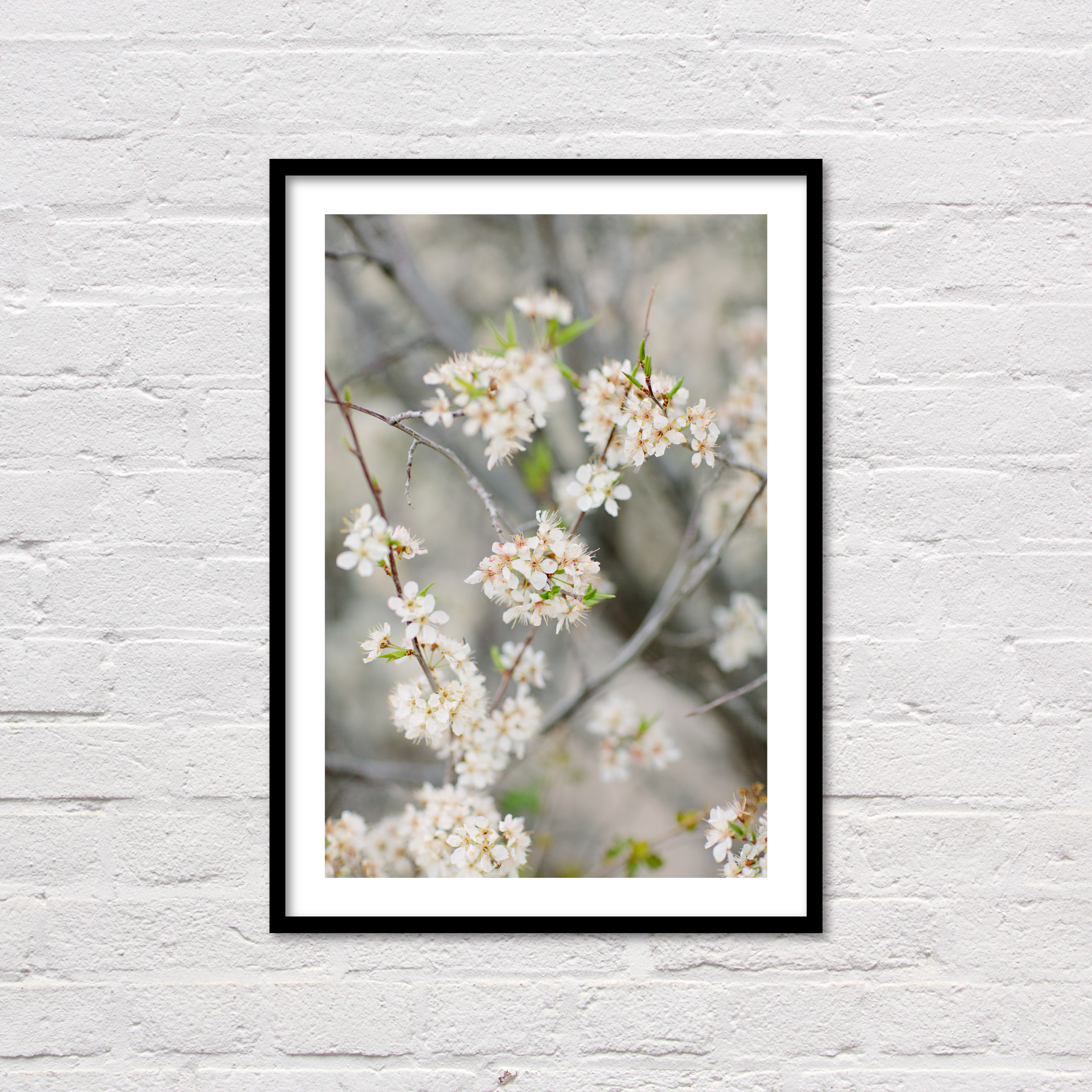 Spring Floral Print, Blossoms, Printable Wall Art, Minimalist Floral Printable, White & Grey Modern Art, Flower Photography